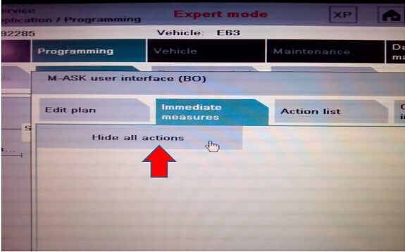 use BMW ICOM ISTS-D ISTA/P Expert mode