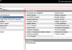 Change Mb Star Xentry Language